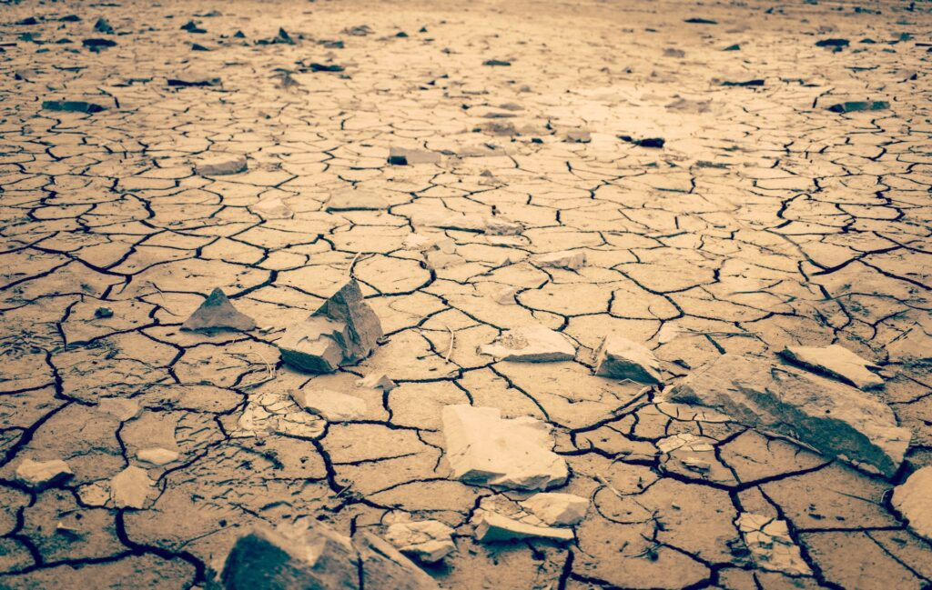 Dry Arid Desert Wasteland With Cracked Earth And Rocks